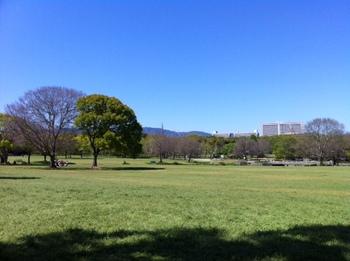 もみじ川2012.jpg