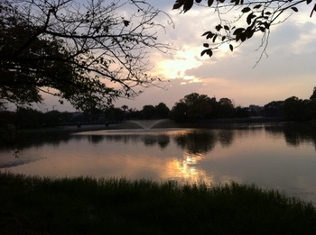 万代池公園.jpg