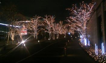 赤坂3.jpg