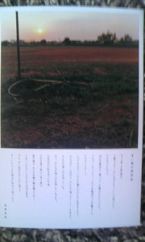 青い風の招待状.jpg